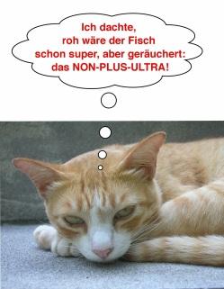 74f53-caramel_raeucherfisch