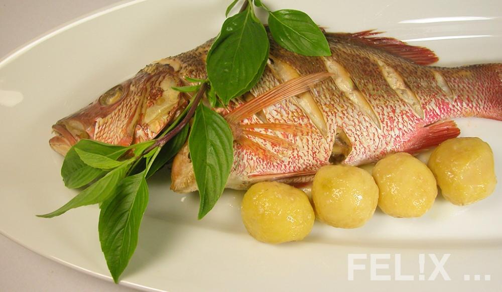 Fisch_ganz_Kartoffeln_1024