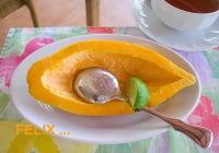 e58f3-papaya_limette