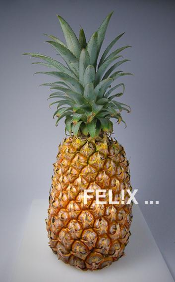 9763c-ananas