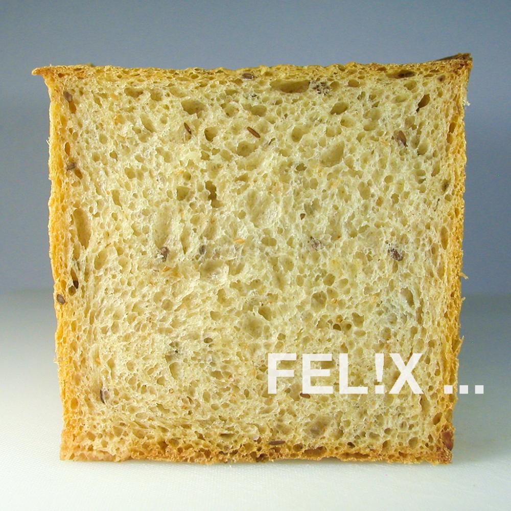 Toast_Scheibe_1024.jpg