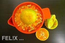 17270-orangen_auspressen