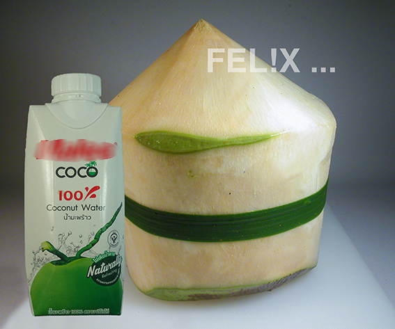 e4a99-kokosnuss_jung_produkt