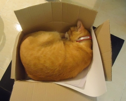 Caramel_Box