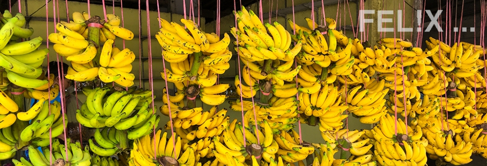 BananenBananen_1024